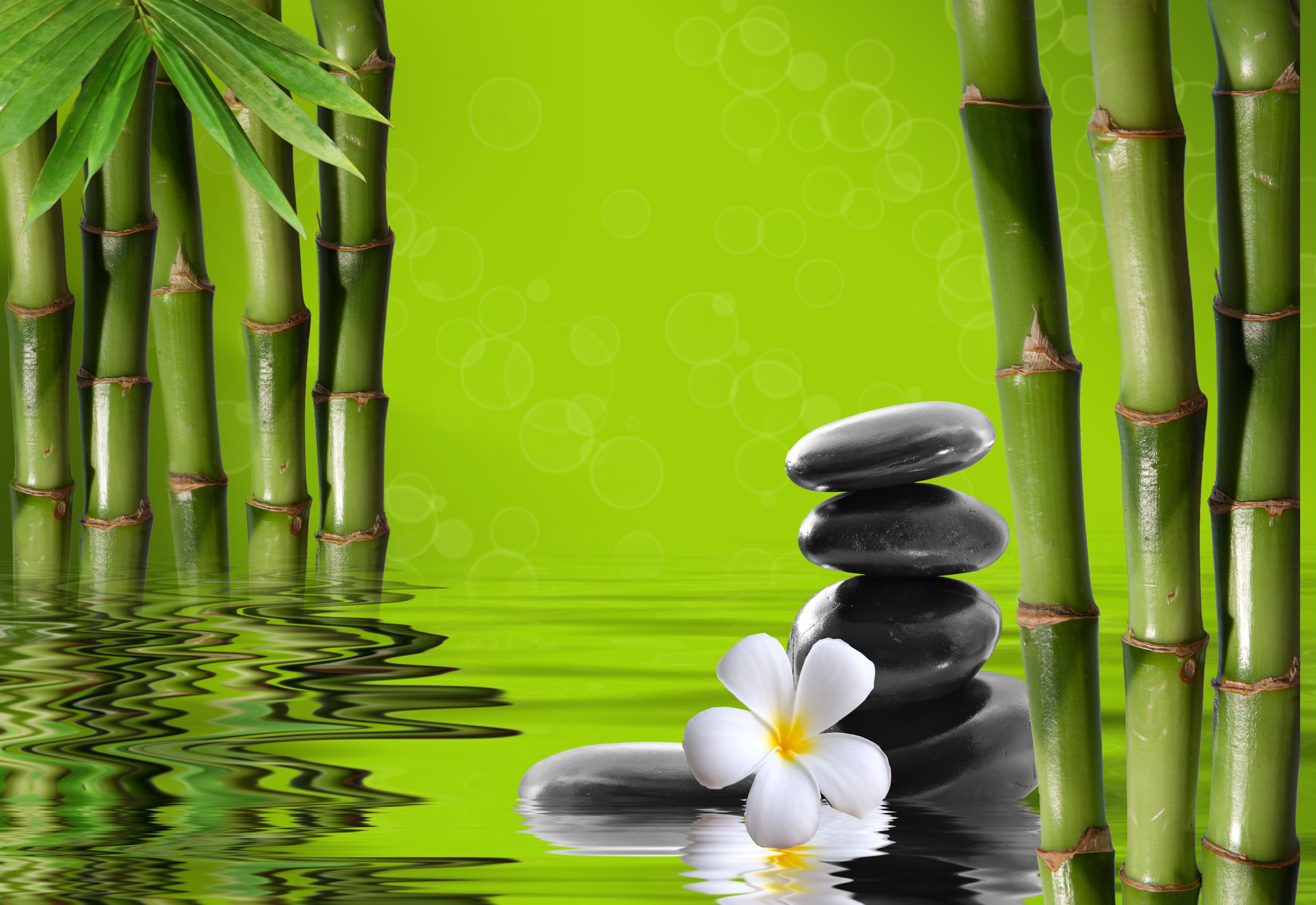 Feng Shui Alsace médecine douce